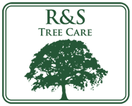R&S Tree Care Hampshire